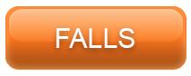 FALLS_CAT